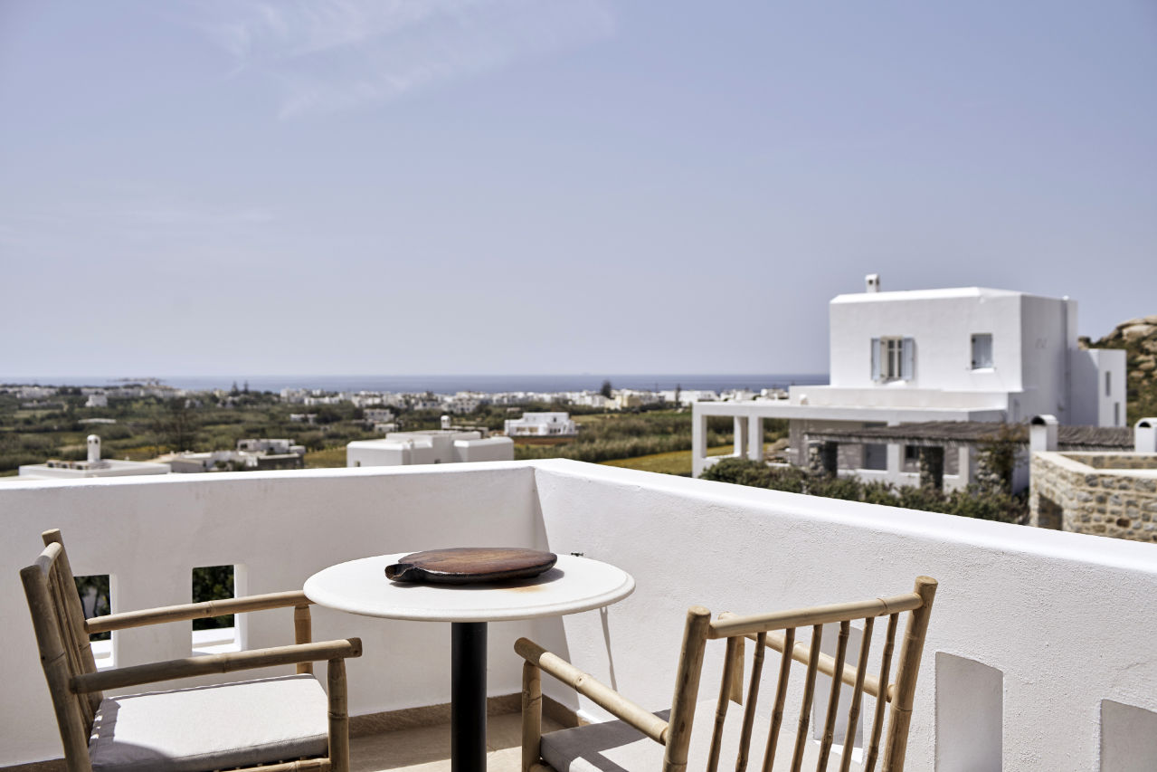 NAXIAN_COLLECTION_VIEW